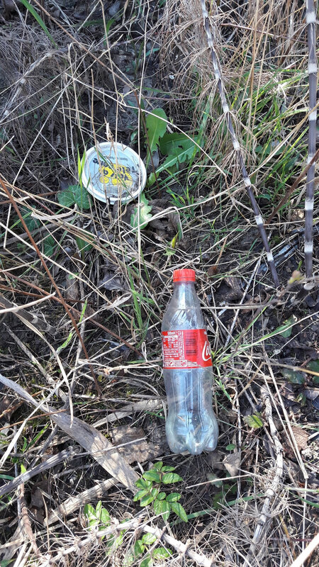 20190320 déchets lavanchon bis
