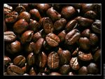 galerie_membre_tasse_cafe_photo_grain_cafe_02