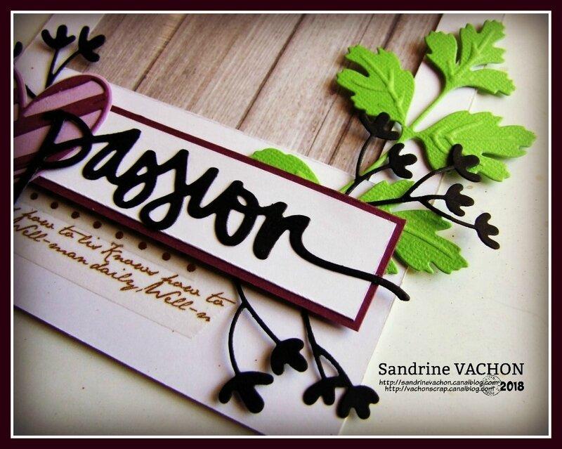 Défi 7-2018 PS Sandrine VACHON (2)