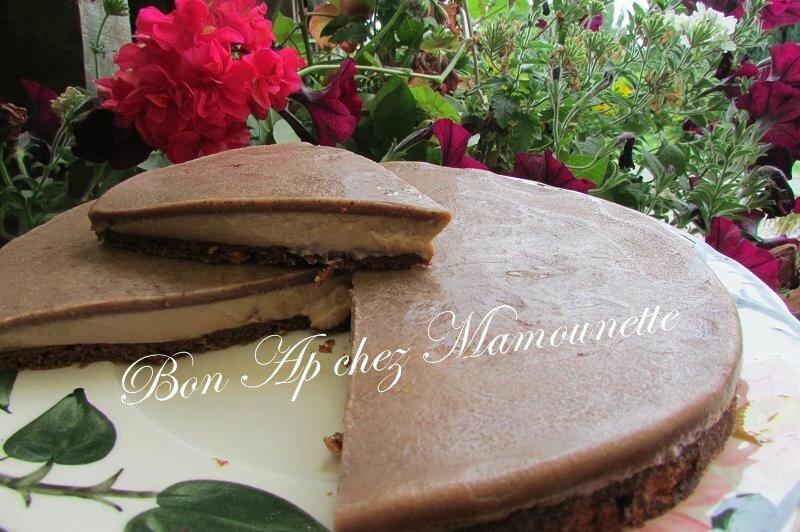 gâteau magique au chocolat-2 010