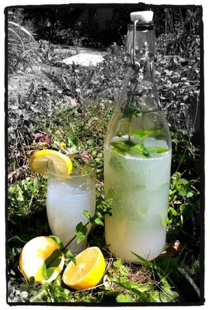 citronade à la menthe - lemon mint