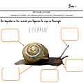 Windows-Live-Writer/Projet-Escargot-Rigolo_D93A/image_34