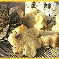 Cake festif roquefort, saint néctaire et noix de pécan
