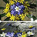 ronds_de_fleurs