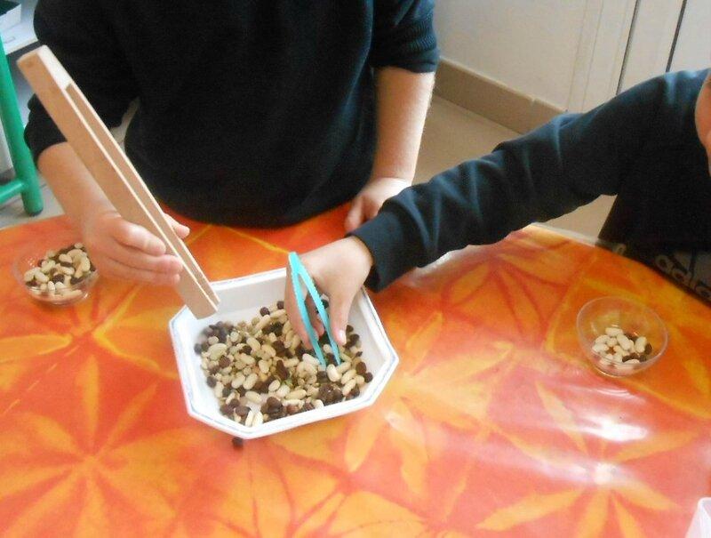 Ateliers autonomes: les graines