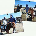 Mardi 16 février 2016 - poneys
