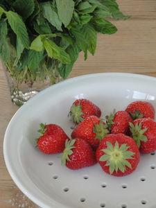 fred_fraises_02