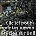 [carnet de voyage] bali, l'île des dieux : nîmes => ubud