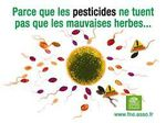pesticides mauvaises herbes fne