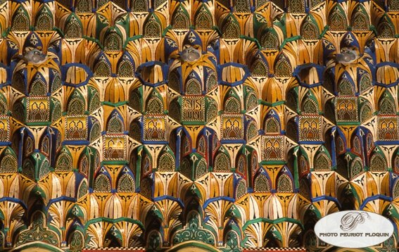 RABAT_Palais_royal_de_Dar_Es_Salam_mouqarnas_en_bois_peint_zouak