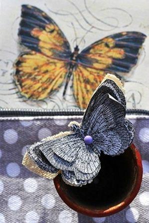 papillon28