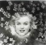 2017-03-27-Marilyn_through_the_lens-lot04