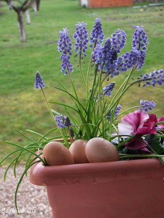jardini_re19_Mars13_3