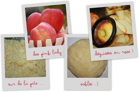 Tarte fleurs de pommes7