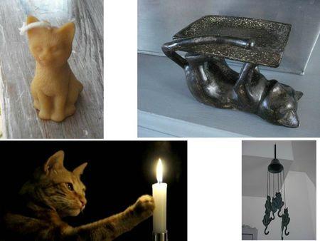 COLLEC CATS (6)