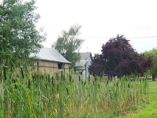 Hescamps Village (6)