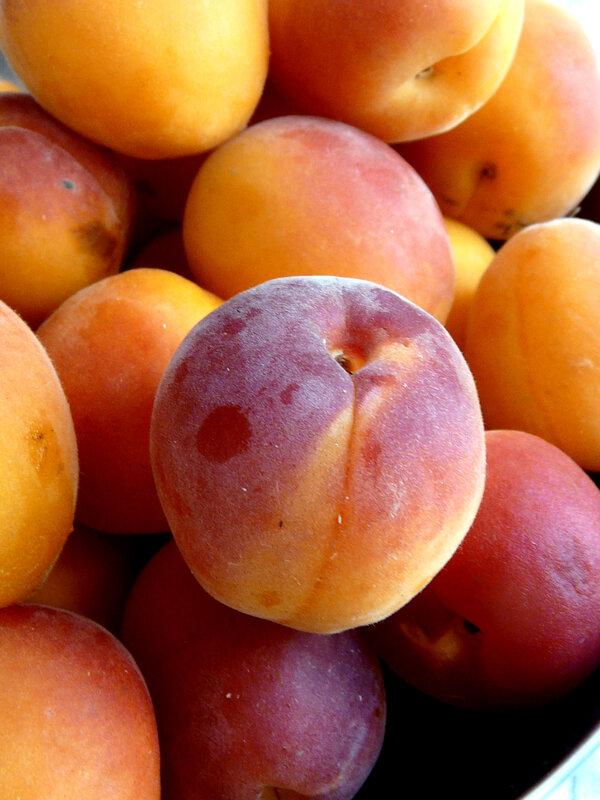 Abricot orange red roussillon (8)