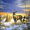 hiver cerf paysage