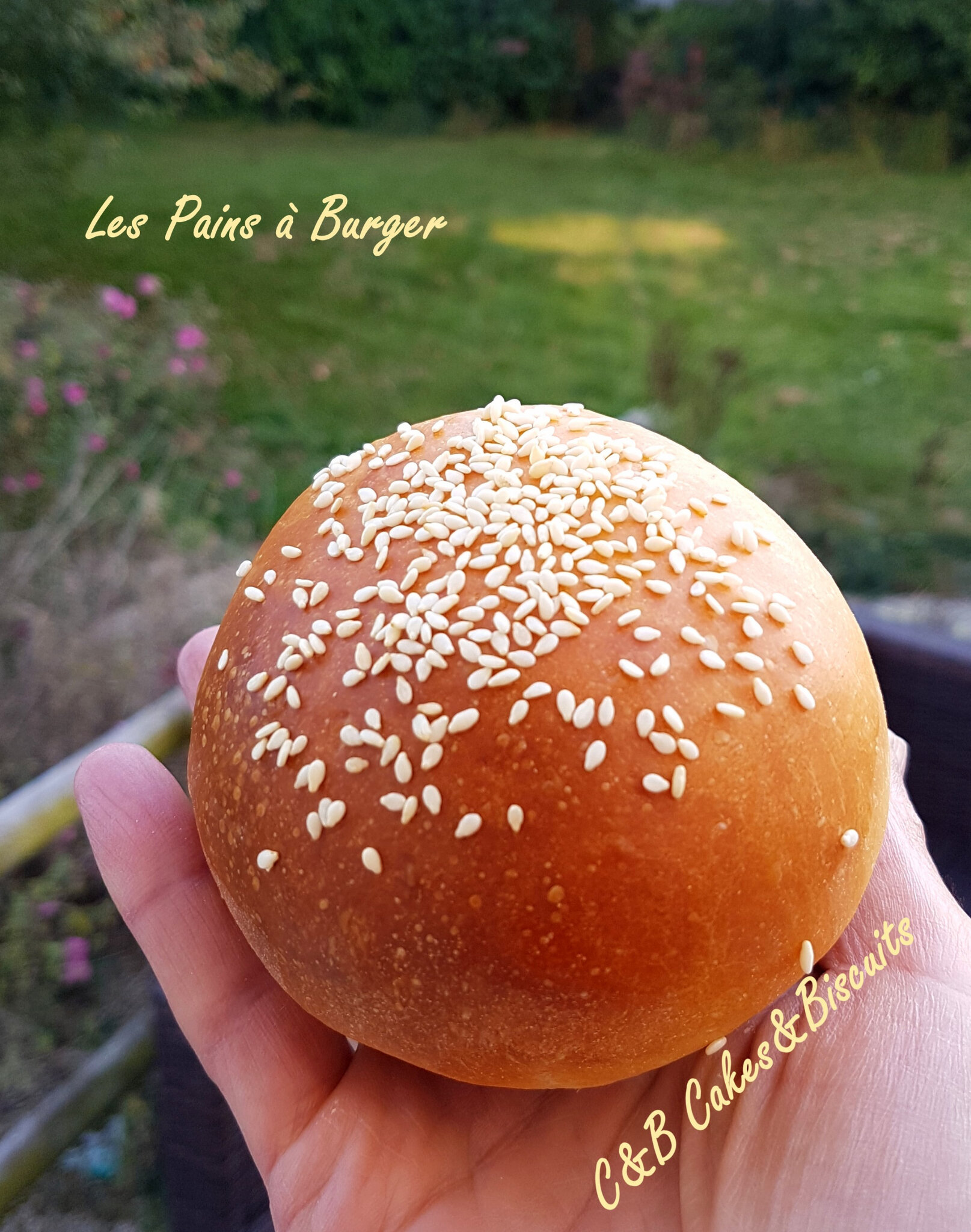 Les Pains à Burger