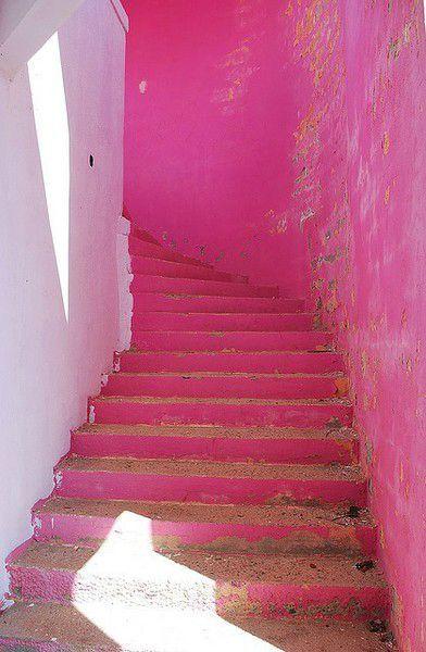 mur rose
