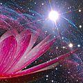 « comment laisser l'amour prendre toute la place et naître à la grâce éternelle ? » quentin disneur