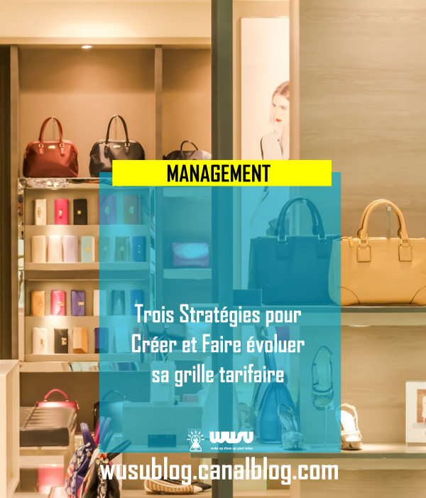 3-strategies-creer-modifier-grille-tarifaire-wusu-blog-winnie-ndjock-2018