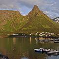 Île de senja (norvège)
