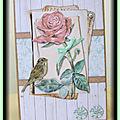 Carte 3d rose oiseau