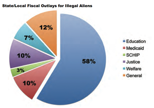 State-illegal-immigration-costs-pie-chart