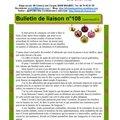 Bulletin n°108 : joyeux noël !!!
