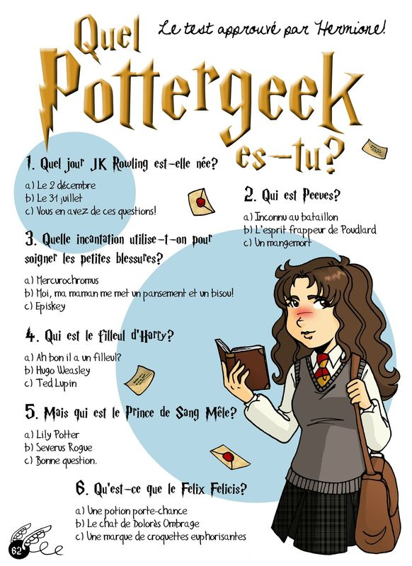 Quel Pottergeek Es Tu Journal D Une Pottergeek