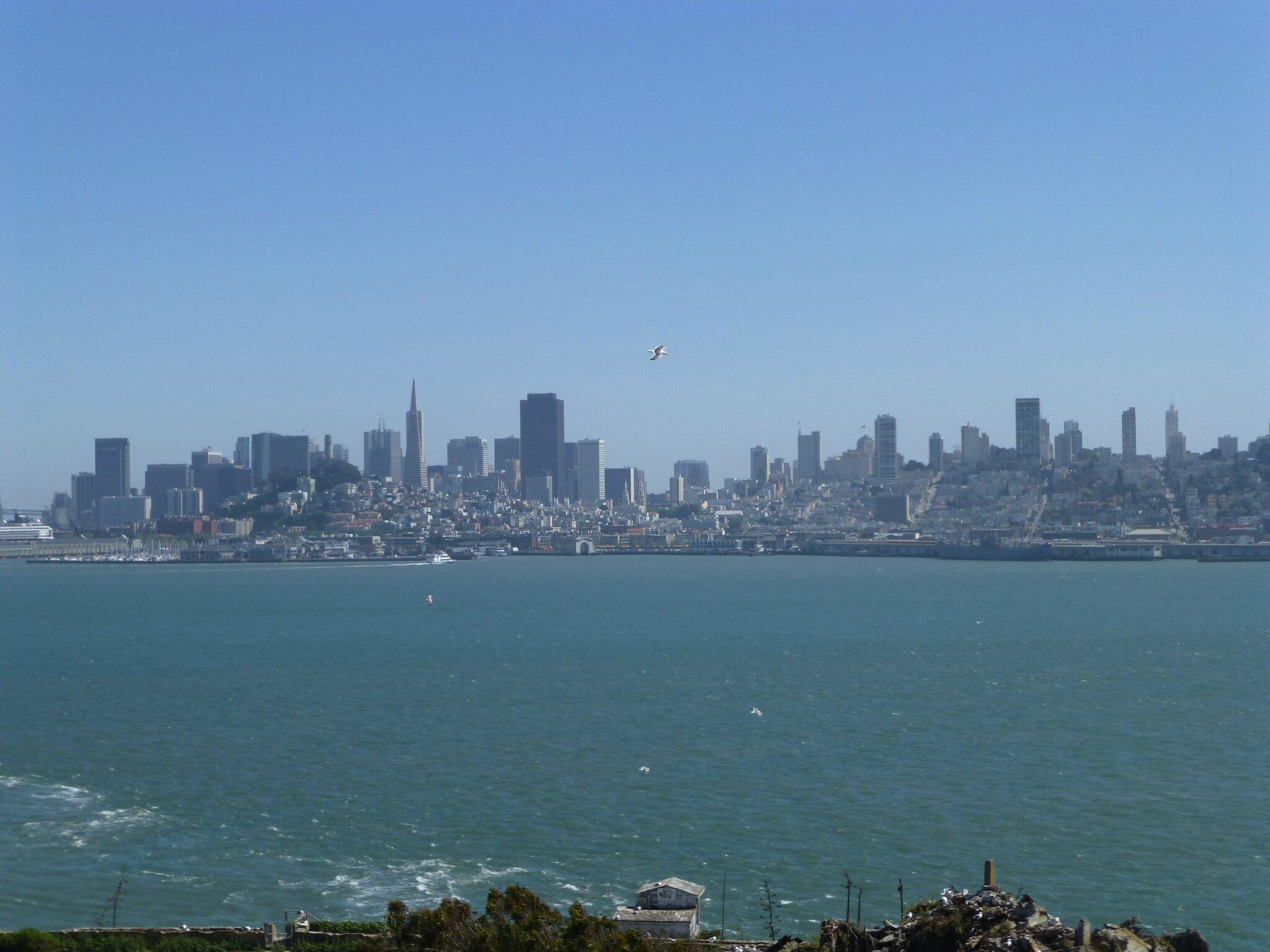 Alcatraz (71)