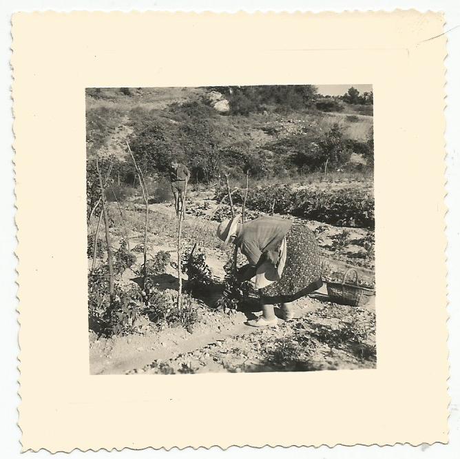 La centenaire au jardin par Lucienne Desnoues.