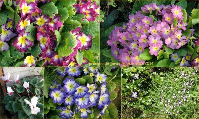 montage jardin mamie 09