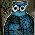 Picture a hoot