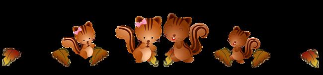 Bannière écureuils