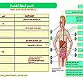 وظائف الجهاز الهضمي عند الانسان
