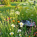 Windows-Live-Writer/Jardin_10232/DSCN0762
