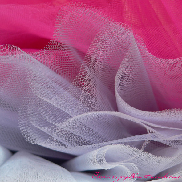 Swan_tulle