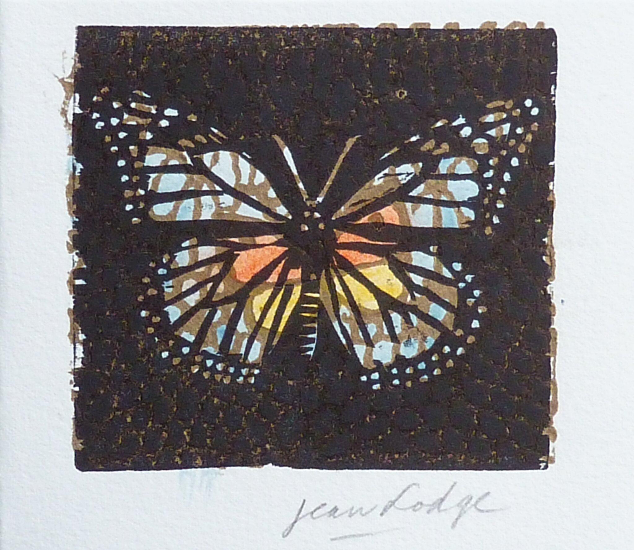 Jean Lodge , papillon, xylographie en couleurs -P1270991
