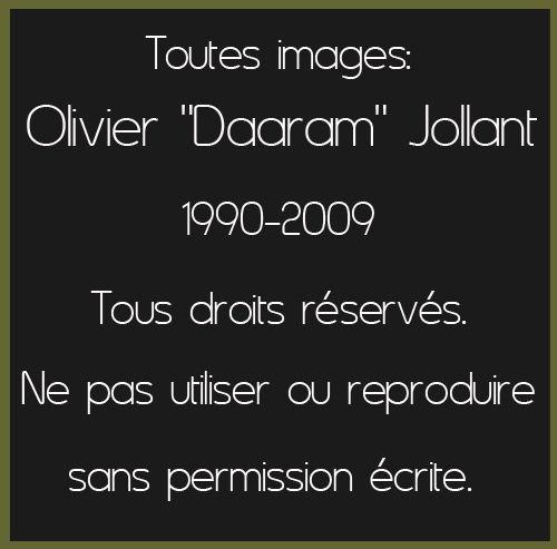 Copyright_Olivier Daaram Jollant