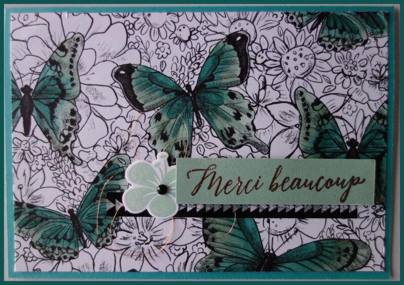 Carte Papillon SB (2)