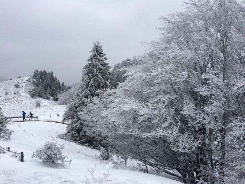 paysages enneigés sur le puy de Jume