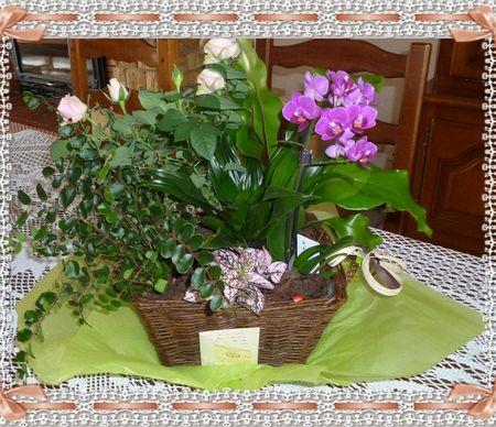 fleurs_anniv_Pat