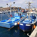 150415_CANARIES_047