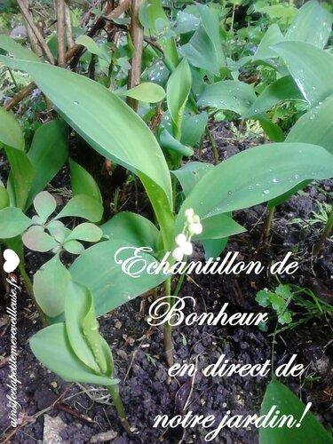 1 mai 2015 echantillon bonheur