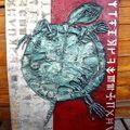 Fossile tortue 90x60cm