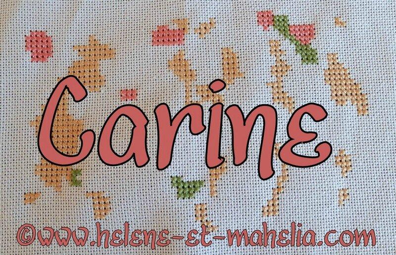 carine_saldec13_2