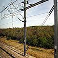 IMG_8456 TGV