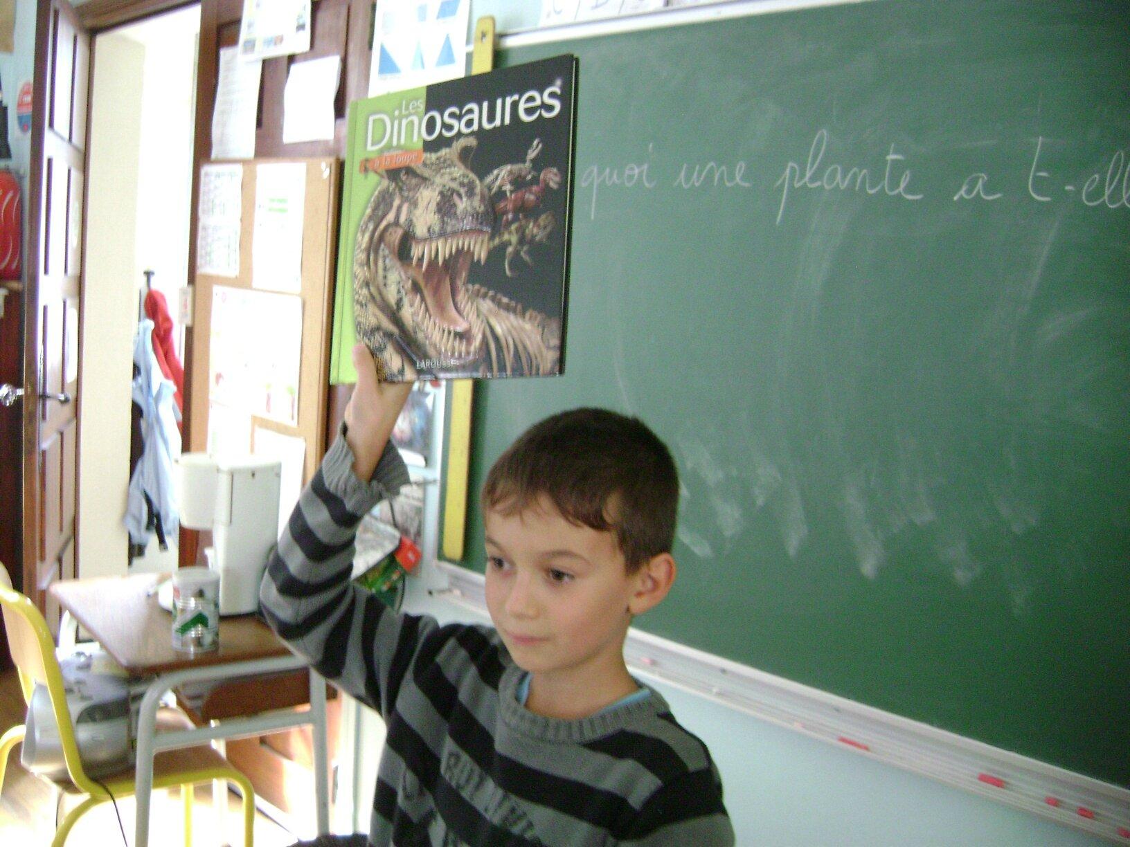 un livre sur les dinosaures